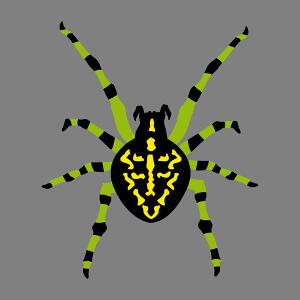 Araignée ventrue parsemée de taches, à personnaliser.