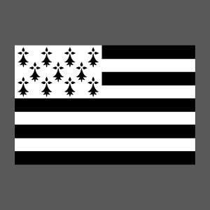 Article Drapeau breton vectoriel simple à créer et personnaliser en ligne.