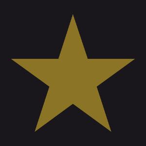 Imprimez un t-shirt étoile personnalisé avec une couche à effet métallique.