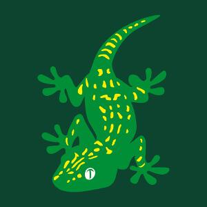Dessin de gecko stylisé parsemé de taches, un motif animaux et reptiles spécial impression en ligne.
