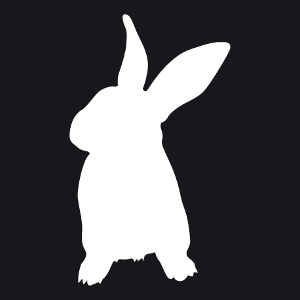 T-shirt Lapin stylisé dessiné de face personnalisé.