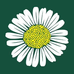 Fleur champêtre, design marguerite ou pâquerette à personnaliser.