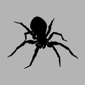 Design araignée stylisée, avec une mygale une couleur personnalisable.