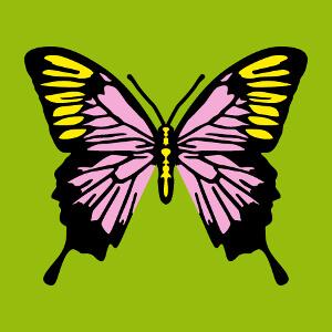 Papillon coloré décoratif, un design à personnaliser.