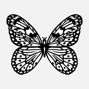 Papillon dessiné en noir et blanc en format vectoriel. Le papillon est dessiné en aplats blancs et lignes fines, modifiez les couleurs.