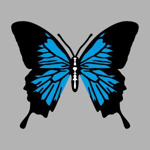 Motif papillon multicolore à personnaliser en ligne.
