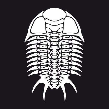 Squelette graphique de trilobite, un motif fossile et Halloween élégant à personnaliser.