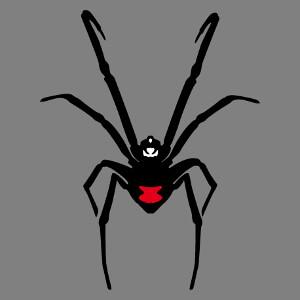 Dessin de veuve noir vectoriel, un design araignée à personnaliser.