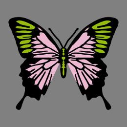 Papillons personnalisables à imprimer en ligne, sur t-shirt, tasse, etc.