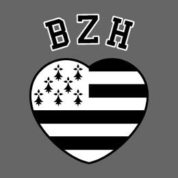Motifs Bretagne et BZH à imprimer soi-même.