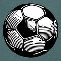 Ballon de foot deux couleurs à fond opaque et faces hexagonales et pentagones.
