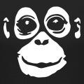 Visage d'orang outan dessiné en négatif pour impression sur t-shirt ou accessoire sombre.