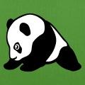 Bébé panda mignon dessiné de profil en noir et blanc et tracés stylisés.