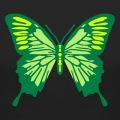 Papillon décoratif dessiné en trois couleurs.
