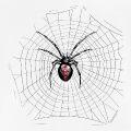 Araignée dans sa toile, dessin de veuve noire haute résolution.